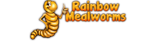 rainbowmealworms.net
